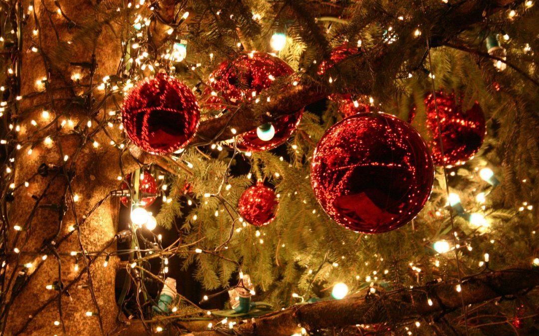 Празнична програма за месец Декември!