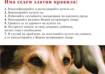 КАМПАНИЯ ЗА БЕЗДОМНИ КУЧЕТА-2