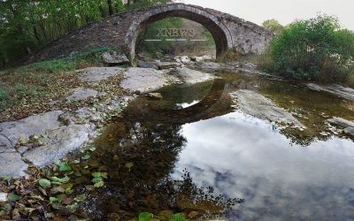 Проект на заповед за обявяване на защитена зона Родопи-Източни
