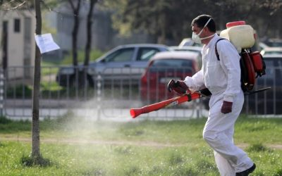 Община Ивайловград ще извърши третиране срещу кърлежи на 13.05.2021 г.